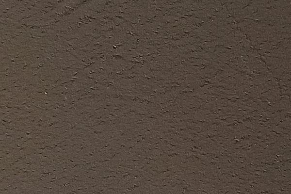 10-21-moss1536D839-13DF-A00E-1A97-E44D5D97BB28.jpg
