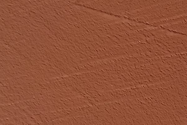10-26-rose-red843DBA02-F7C6-5FA8-5C1B-7441D7CE0D60.jpg