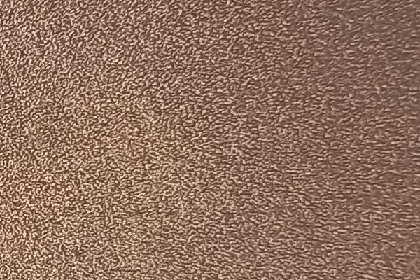bronze82F6BCFF-52C1-4496-8E7B-623BB23E3DD9.jpg